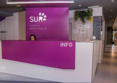 Recepción Centro Veterinario Sur