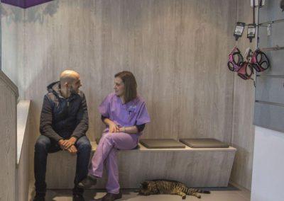 Sala de Espera Medicina Felina