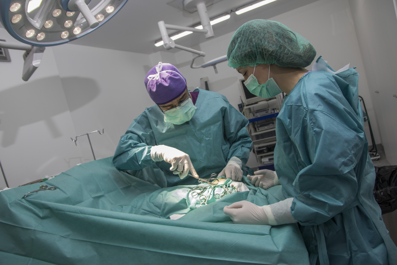Cirugía tejido blandos, Maive